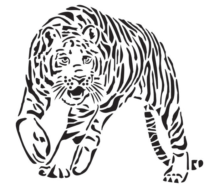 Tigers Face Drawing