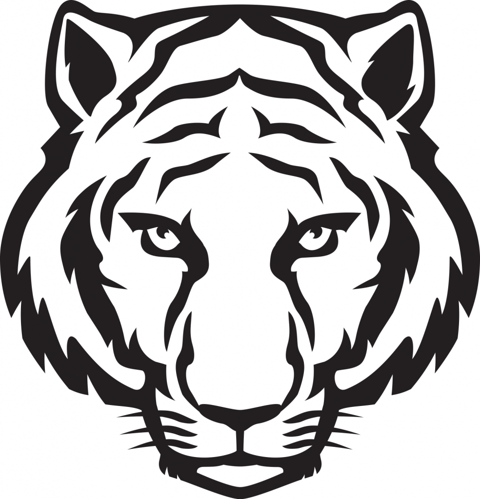 Tigers Step By Step Drawing