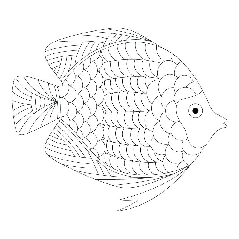 800x800 Inspirational Printable Fish Coloring Pages Online