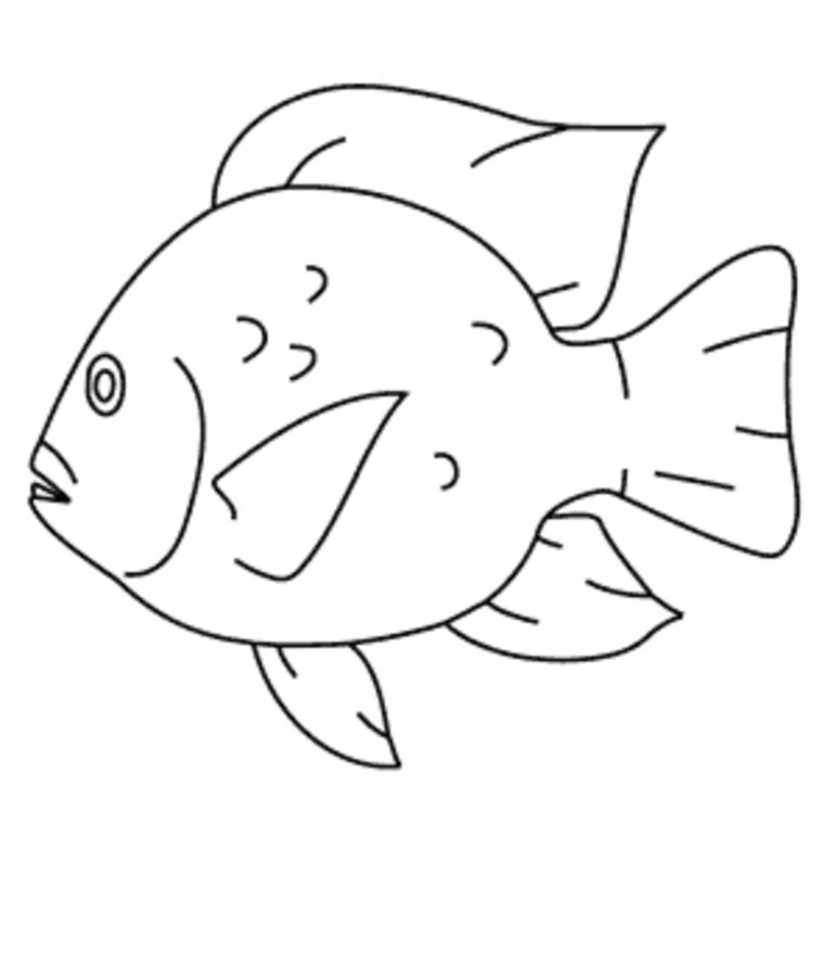 771x900 Coloring Pages Tilapia, Printable For Kids Amp Adults, Free