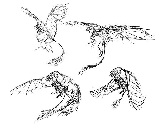 700x532 How To Draw A Griffin