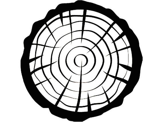 570x429 Tree Slice Slab