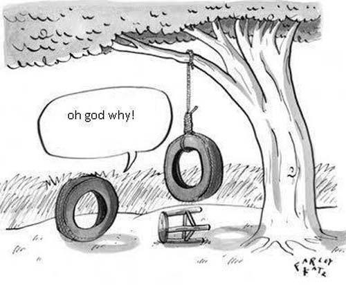 500x412 Tire Swing