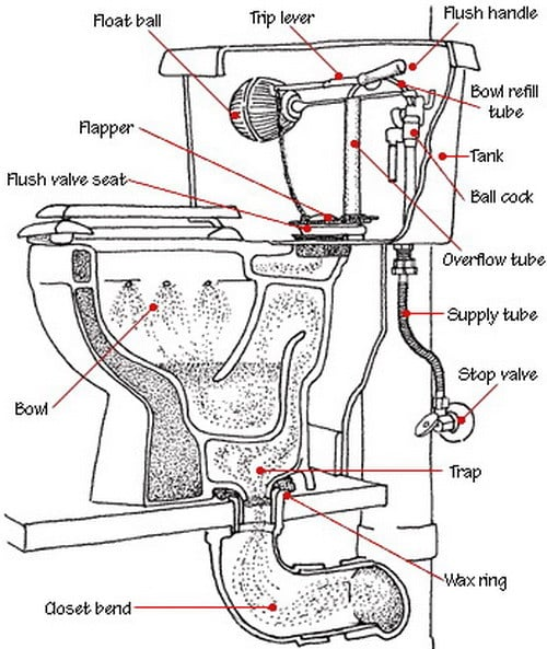 Toilet Detail Drawing At Getdrawings Com