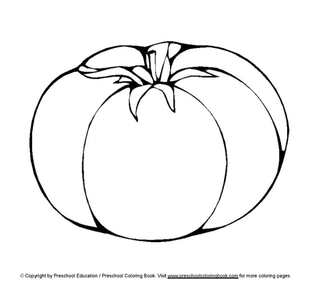Tomato drawing at free for personal use for Tomato plant coloring page
