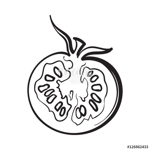 500x500 Sketch Style Drawing Of Ripe Half Tomato, Vector Illustration