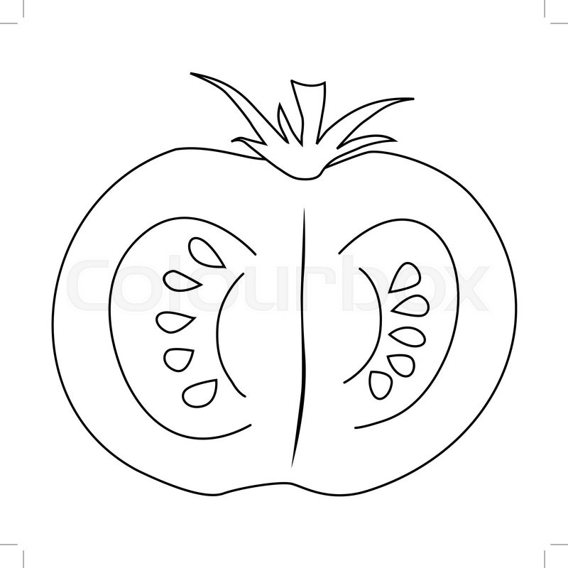 800x800 Outline Illustration Of Cutting Tomato Stock Vector Colourbox
