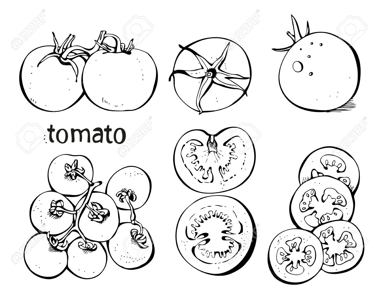 1300x1031 Collectoin Of Tomatoes And Slices On A White Background Royalty