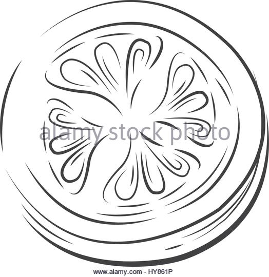 524x540 Sliced Tomato Stock Vector Images