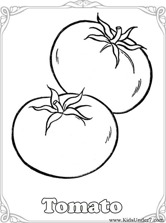 556x749 Tomato Clipart Colouring Page