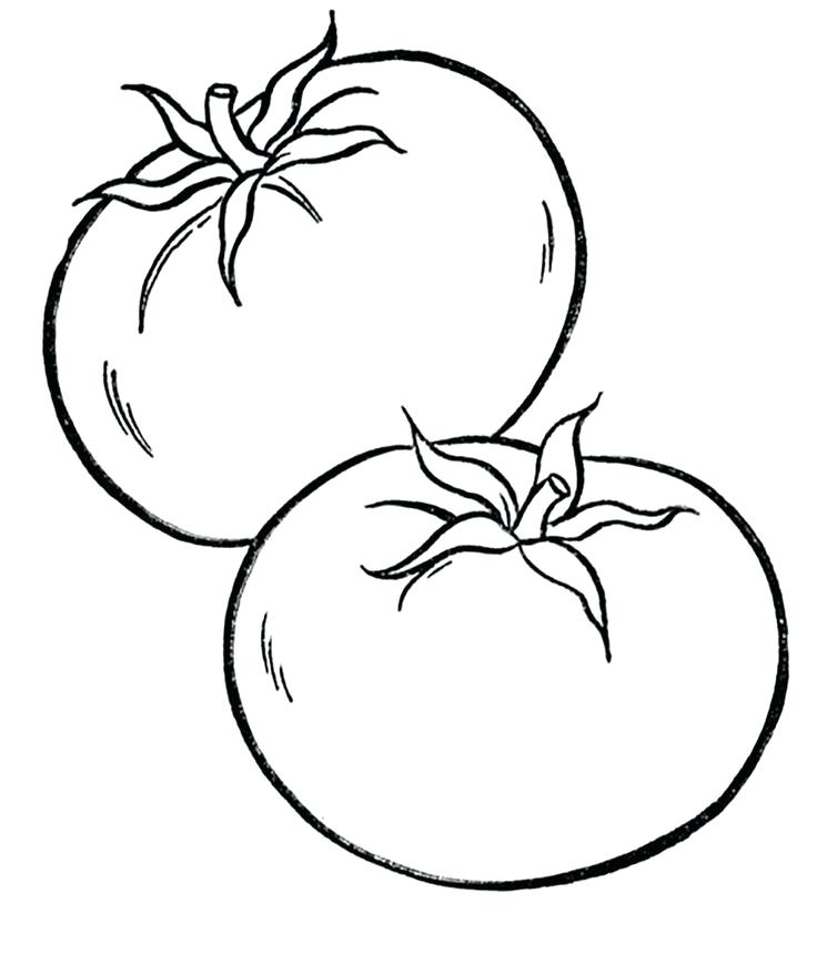 736x878 Delightful Vegetable Coloring Pages Fee Winsome Ideas Tomato