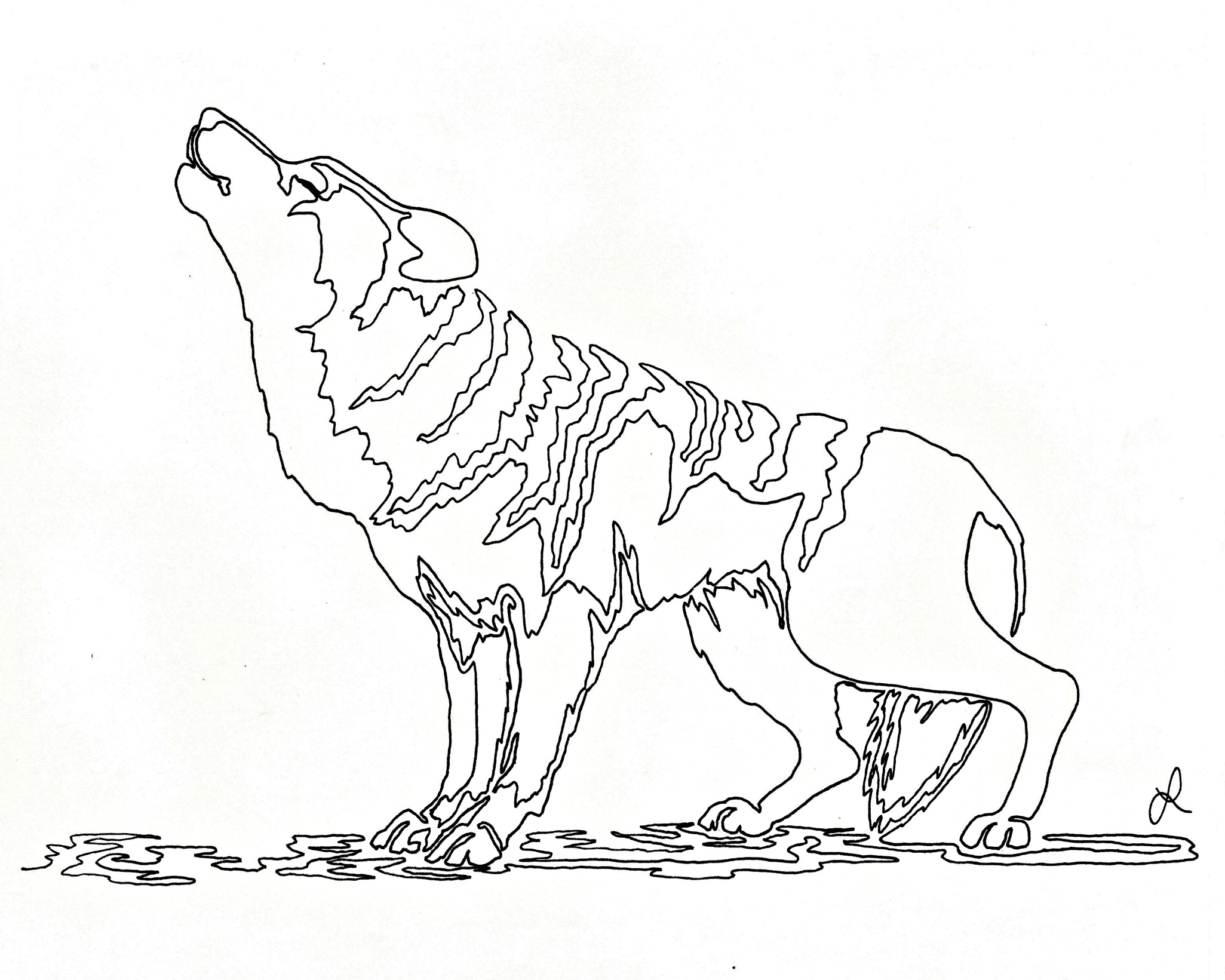 2051x1641 Howling Wolf Continuous Line