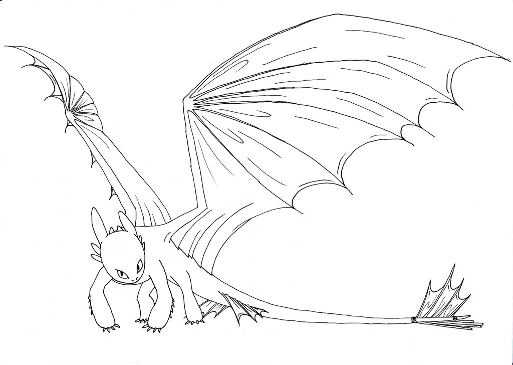 Toothless Dragon Drawing at GetDrawings.com | Free for personal use ...