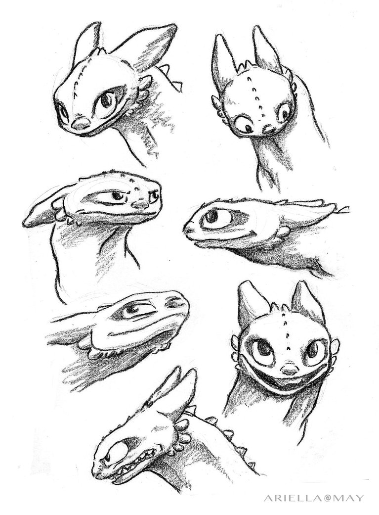 767x1041 Toothless Sketches 2 By Ariellamay