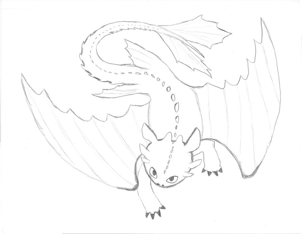 1016x787 Toothless The Dragon Coloringdesign Base By Angelfire400