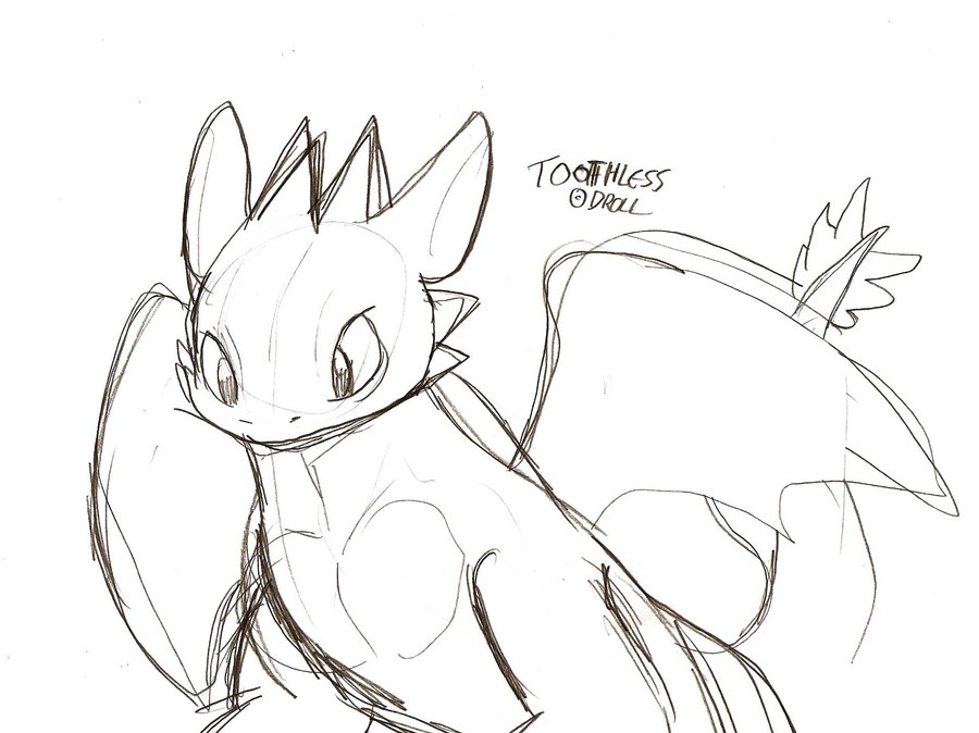 900x674 Toothless Sketch By Droll3