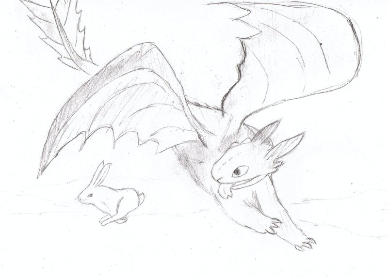 800x572 Toothless Hunting By Silversanta