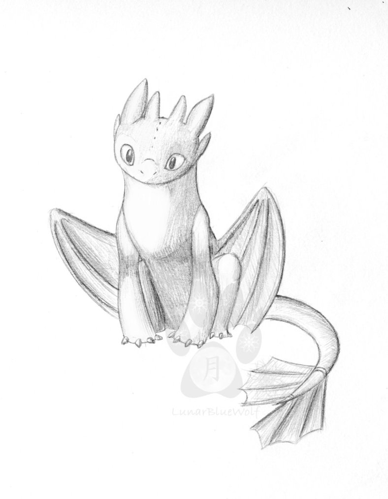 788x1014 Toothless Sketch By Lunarbluewolf