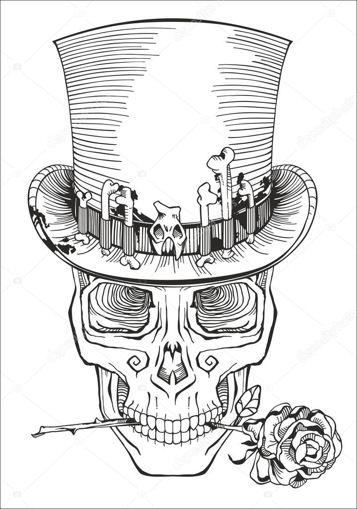 719x1023 Human Skull In A Top Hat Stock Vector Red Spruce