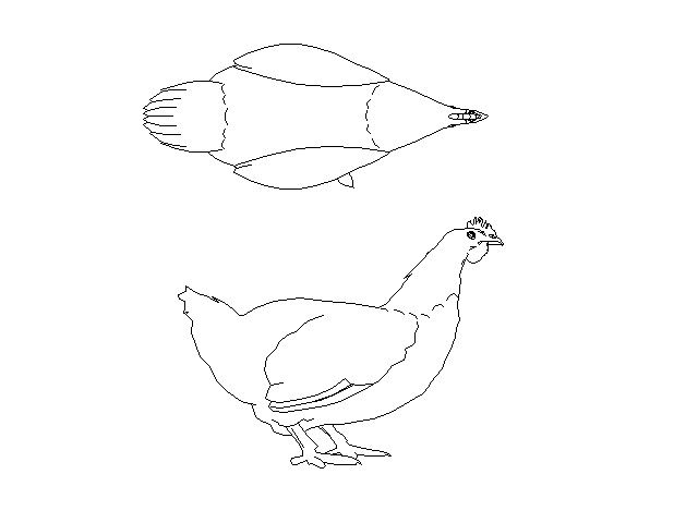 640x480 Hens Top View And Vertical View Cad Blocks Dwg And Drawings