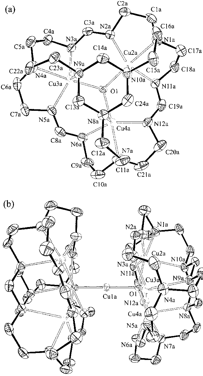 670x1242 Ortep Drawings Of Top View (A) And Side View (B) Of The Molecular