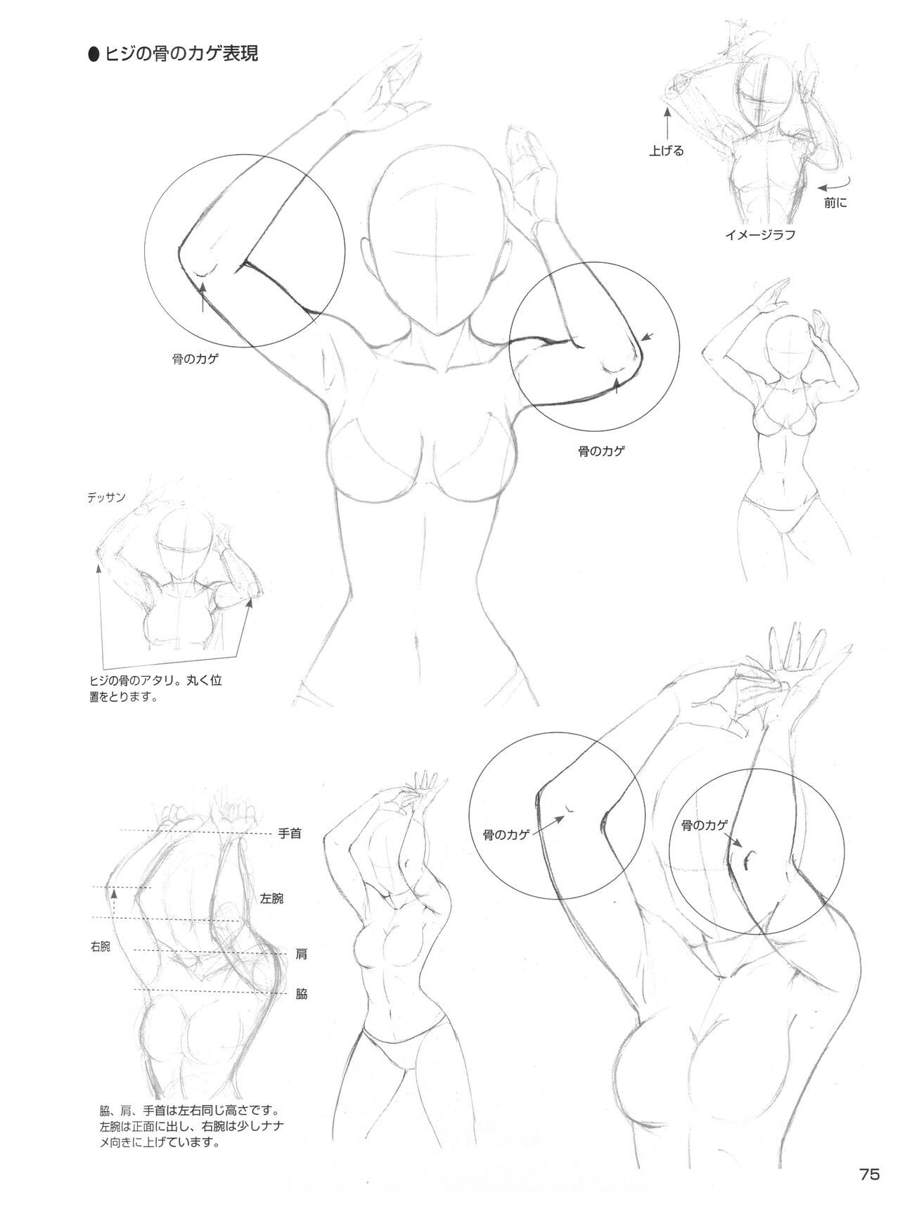 1280x1716 Female Elbowstorso Drawing Female Drawings