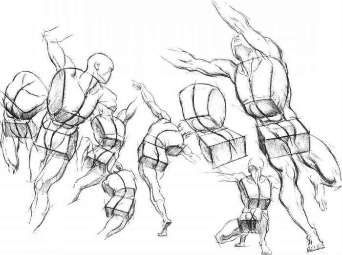 700x522 Human Torso Figure Drawing Misc. Figure Drawing