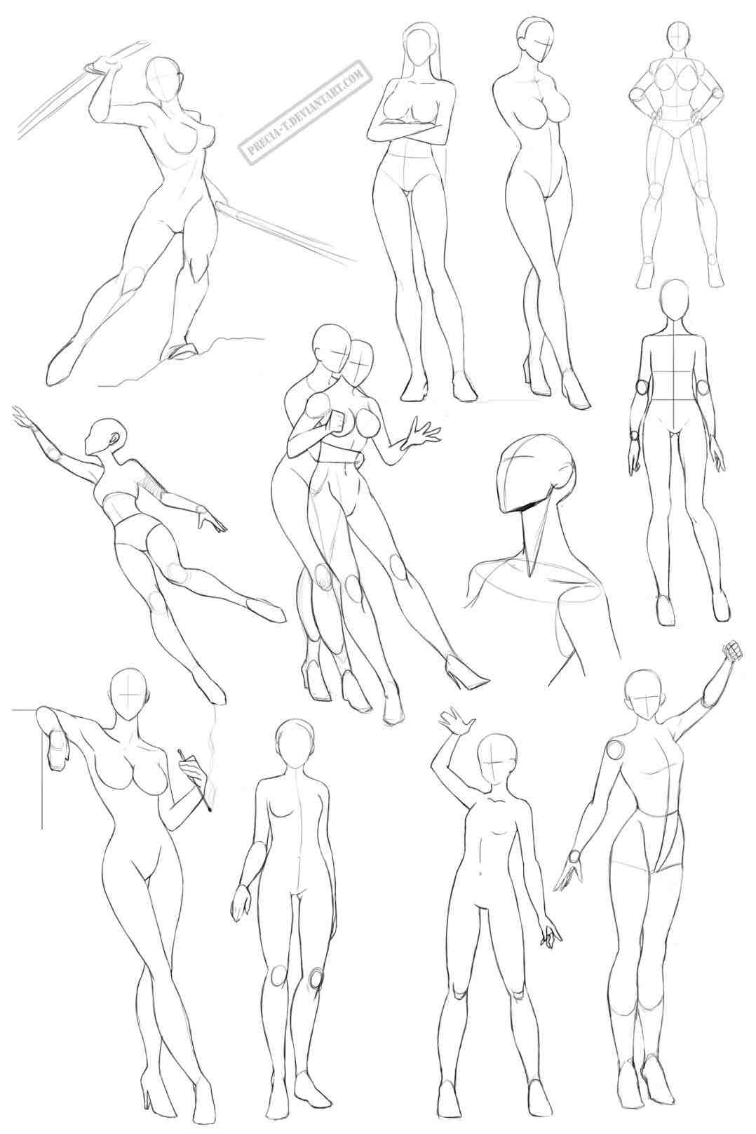 Torso Anatomy Drawing at GetDrawings.com   Free for personal use ...