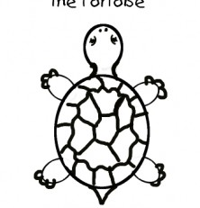 222x231 How To Draw A Tortoise For Toddlers. Step By Step Pdf To Teach