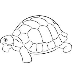 236x248 Image Result For Tortoise Sketch Images Embroidery