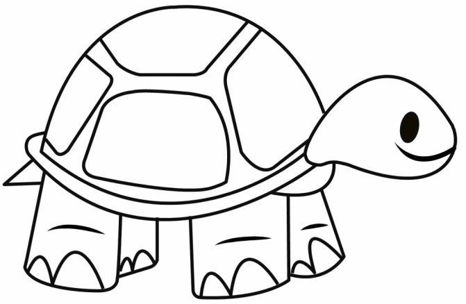 671x438 Coloring Pages Simple Turtle Drawings Simple Sea Turtle Drawings