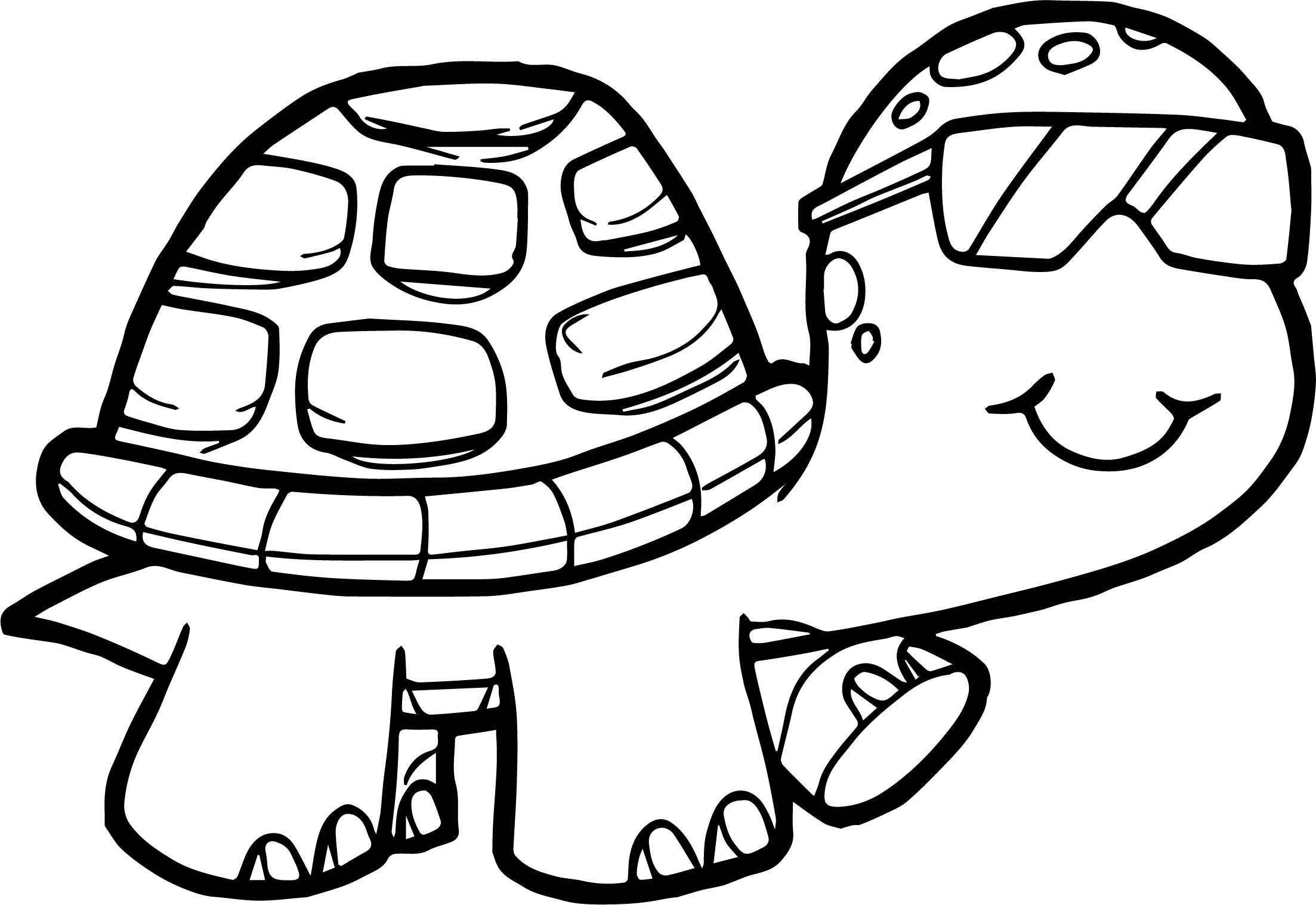 Marvelous 2206x1517 Coloring Pages Turtle In Tiny Draw Image Glasses Tortoise Page