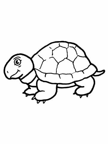 360x480 Cute Tortoise Coloring Page Free Printable Coloring Pages