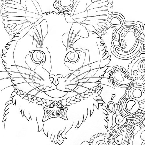 500x500 Tortoiseshell Cat Coloring Page For Adults Root Inspirations