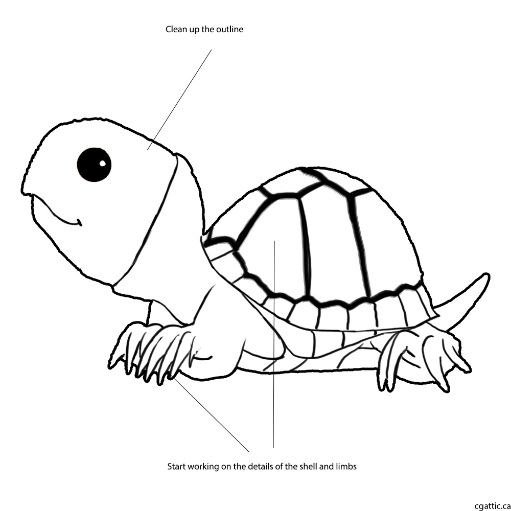 1000x1000 Turtle Cartoon Drawing In 4 Steps With Photoshop