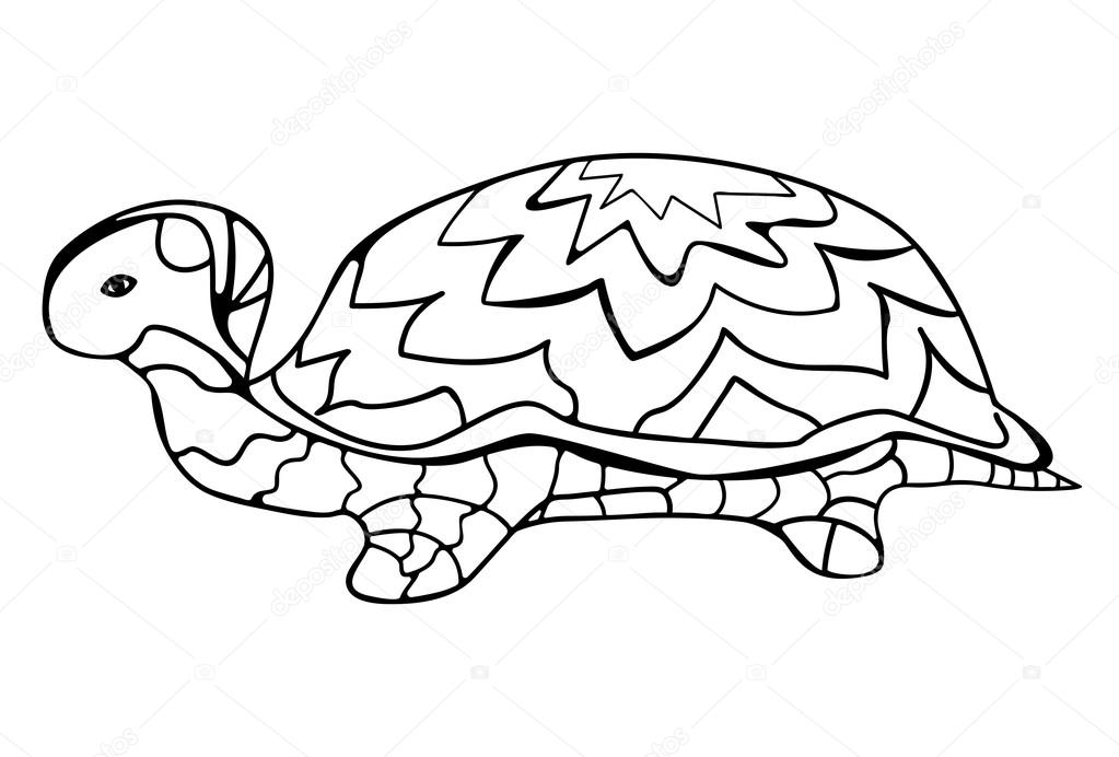 1023x692 Hand Drawn Doodle Of A Turtle Pattern On The Shell Stock Vector
