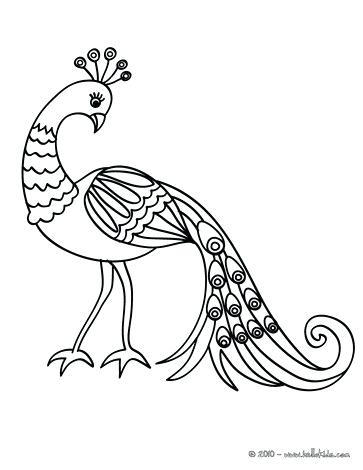 363x470 Good Toucan Coloring Page Image Pages Peafowl 2 Cute Animal Bird