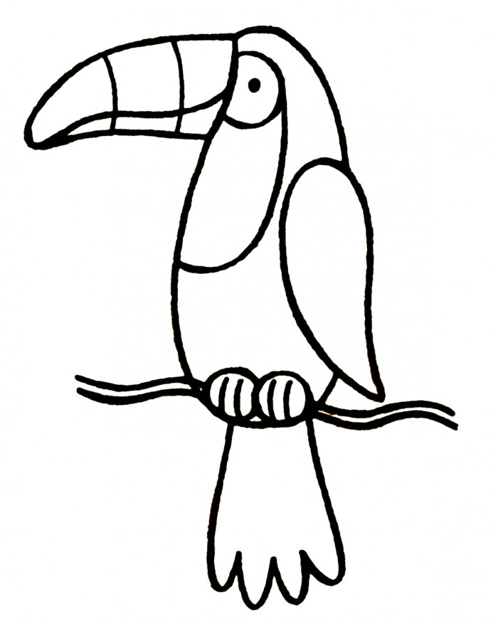 High Quality 700x877 5 Lovely Toucan Coloring Page