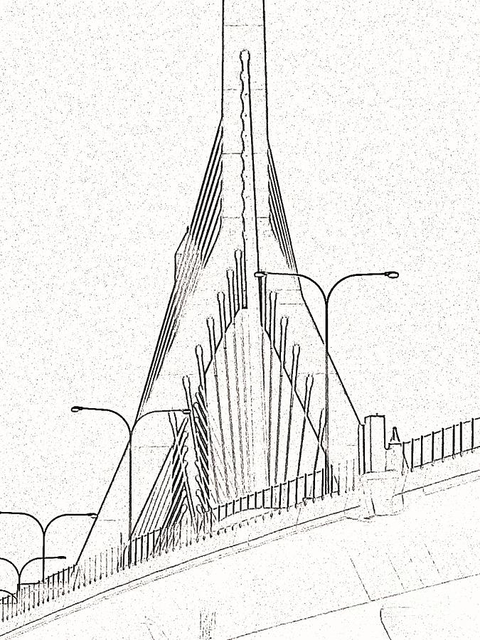 675x900 Line Drawing Zakim Photograph By Stacy Devanney