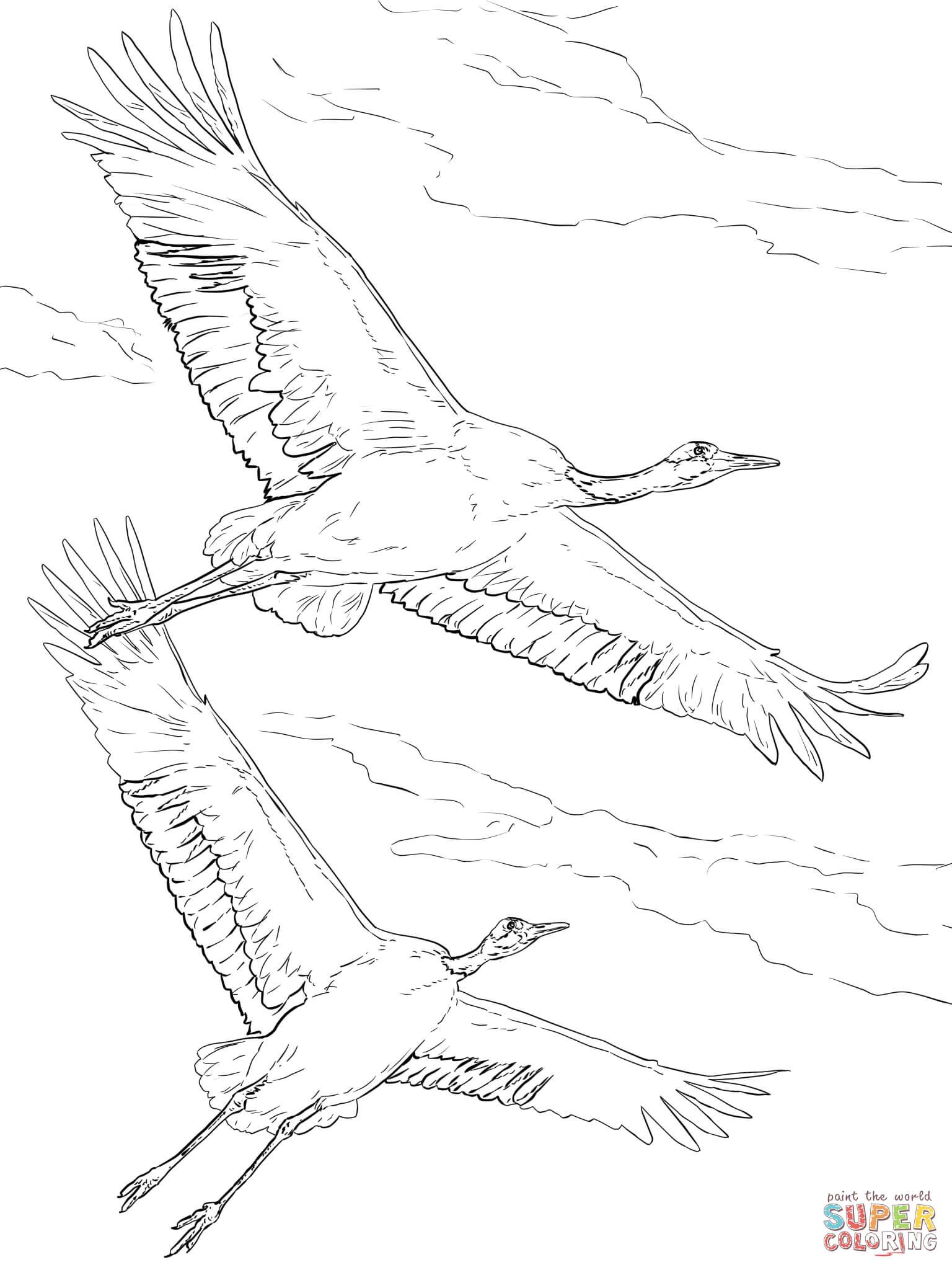 1536x2048 Red Crowned Cranes In Flight Coloring Page Free Printable