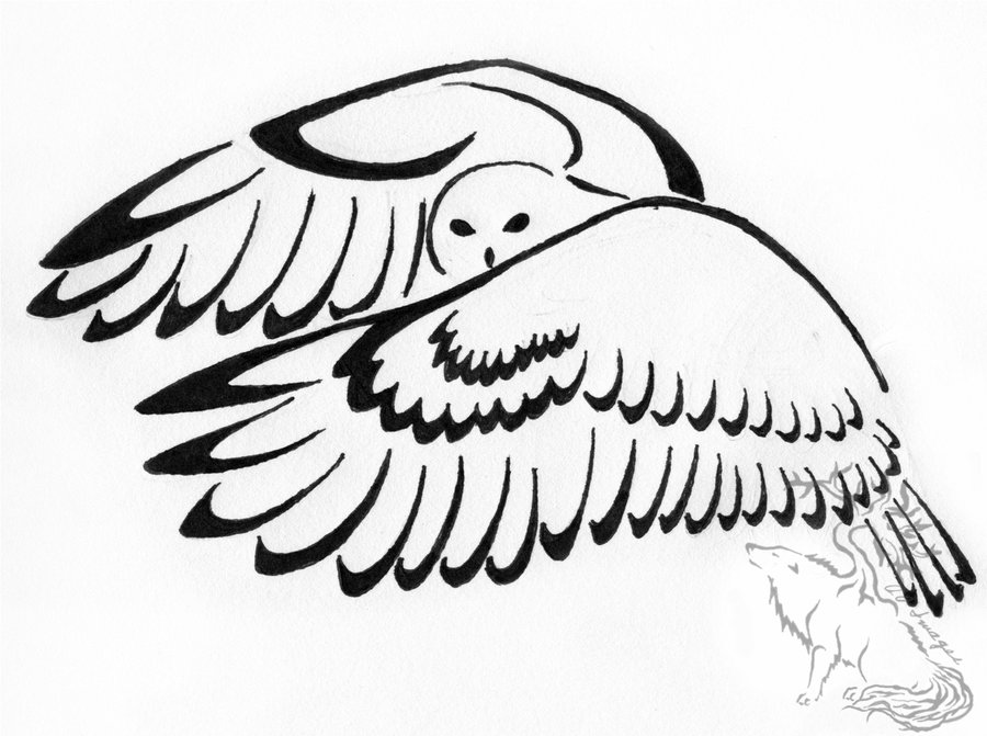 Traditional Tattoo Line Drawing : Traditional owl drawing at getdrawings free for personal use