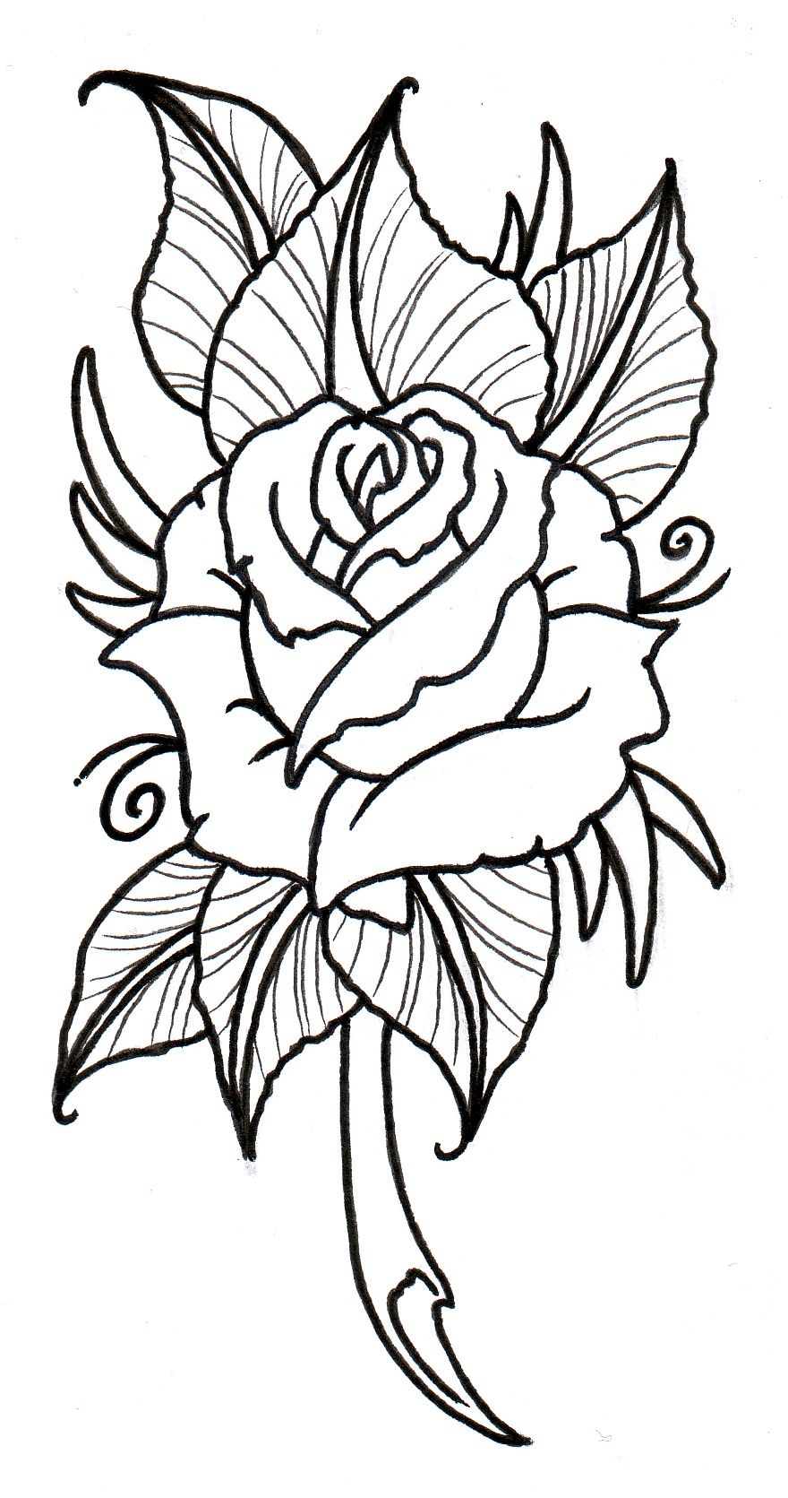 880x1671 Neo Traditional Rose Outline By