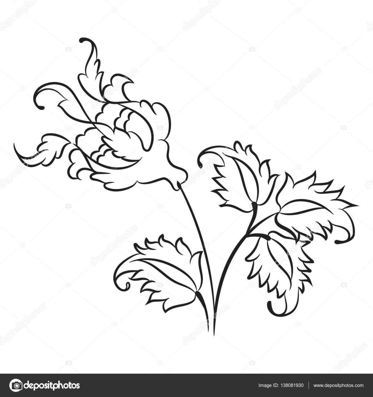 1264x1343 On Vector Traditional Rose Line Drawing The Crocodile