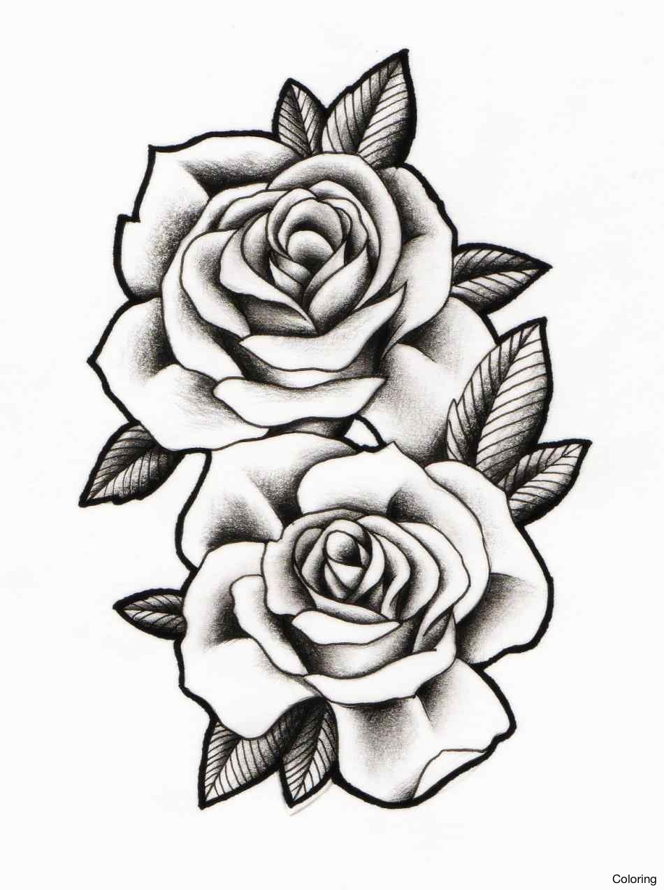 950x1272 Drawing Of Rose Coloring How To Draw Roses Step By Google Search