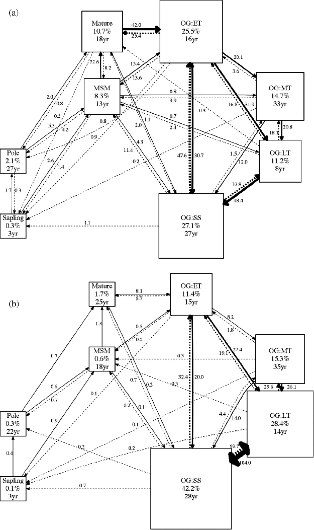 625x1053 State Transition Diagram For The Historic Natural Disturbance