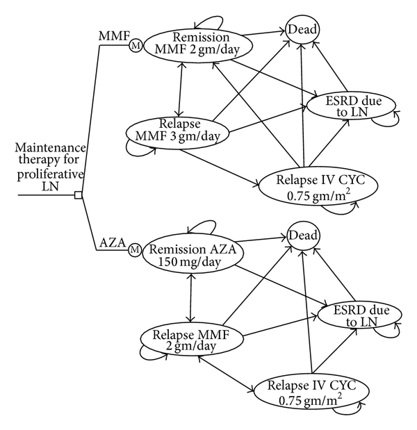 600x619 A) Markov State Transition Diagram Illustrating The Health States