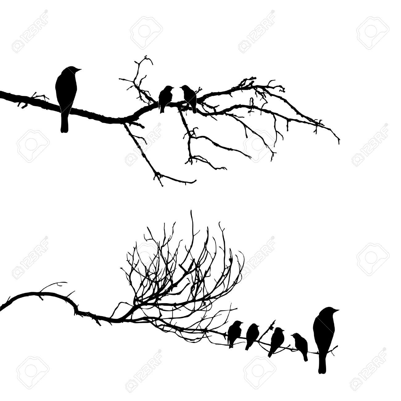 1300x1300 Images For Gt Bird On Tree Branch Drawing Painting On Canvas