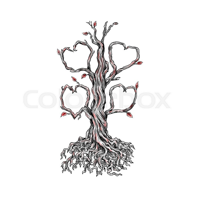 800x800 Tattoo Style Illustration Of A Gnarly Old Oak Tree With Roots