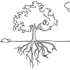 225x225 14 Best Family Tree Images On Family Tree Chart