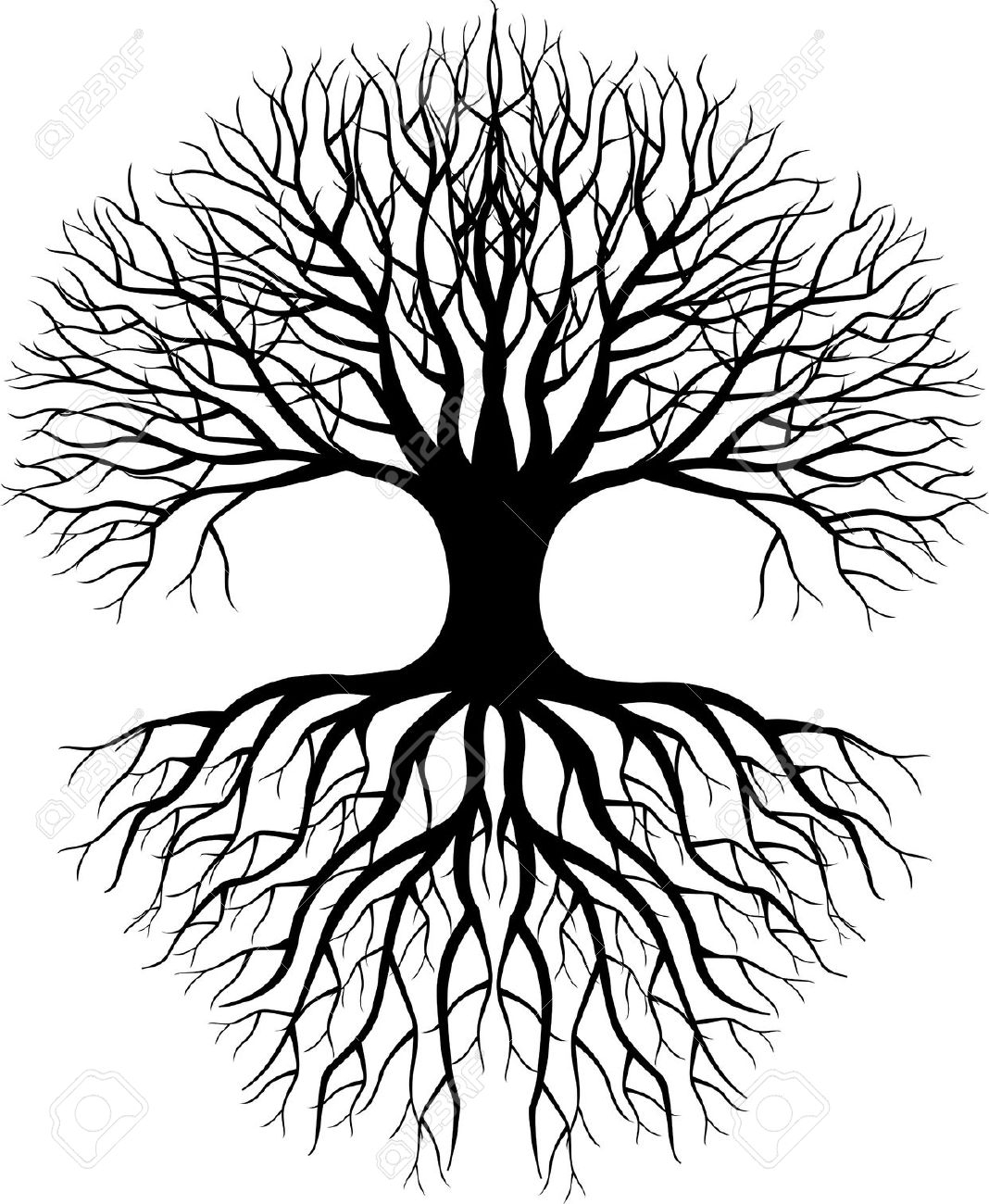 1068x1300 Tree Drawing With Roots